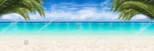 stock-photo-wide-paradise-beach-panorama-background-with-coco-palms-461158402