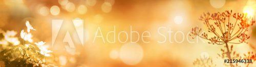 AdobeStock_215946338_Preview